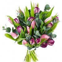 Purplepink - Tulpaner - Skicka blommor & presenter i %city%